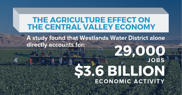The Agriculture effect on the central valley economy. A study found that Westlands Water District alone directly accounts for 29,000 jobs and $3.6 Billion economic activity.